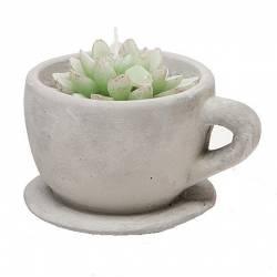 Bougie Verte Sculptée dans une Tasse en Terre Cuite de Couleur Grise Style Plante Grasse Verte 9x10x12cm