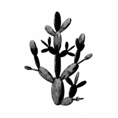 Tableau Moderne Impression sur Toile d'un Cactus Oeuvre Tendance Représentation Naturelle sur Fond Blanc 5x65x92,5cm