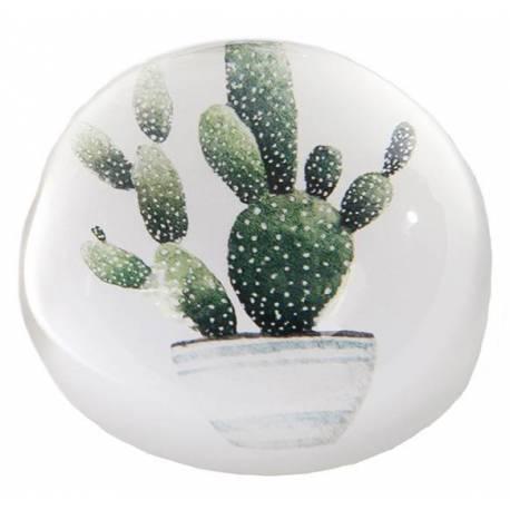 Presse Papier Boule de Sulfure Motif Imprimé Cactus Décoration Ronde de Bureau en Verre 4x8x8cm