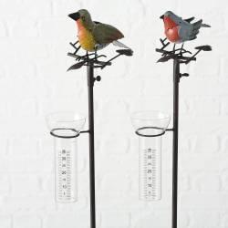 Superbe Pluviomètre à Piquer Tuteur Plante Décoration de Jardin Motif Oiseau en Fer Patiné et Tube en Verre 16x18x115cm