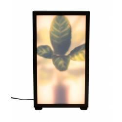 Lampadaire Grow Zuiver Motif Plantes avec Variateur Tactile en Aluminium avec Finition Chêne Foncé et Verre Acrylique 8x29x51cm