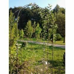 Grande Arche Simple Arche à Fleurs Rosiers Tuteur Plantes de Jardin Passage en Fer Forgé 40x150x250cm