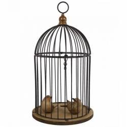 Cage à oiseaux, volière